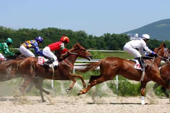 Cobalt and Horse Doping