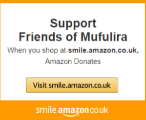Friends of Mufulira Update 6cb26ee40a9b